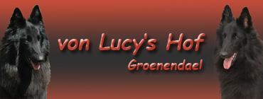 Lucy's Hof